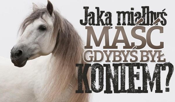 Jaką miałbyś maść, gdybyś był koniem?