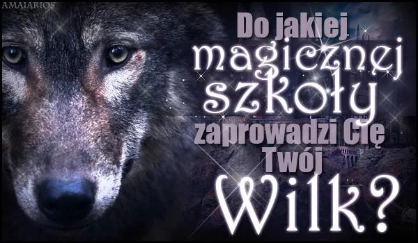 Do jakiej magicznej szkoły zaprowadzi Cię Twój wilk?