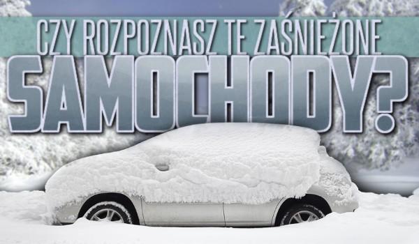 Rozpoznasz te zaśnieżone samochody?