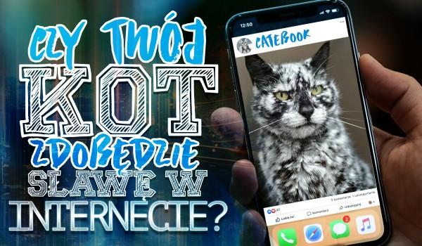 Czy Twój kot zdobędzie sławę w internecie?