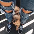 Dogs_Girl
