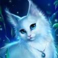 Snowyflower