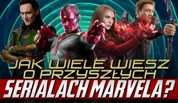 """Jak wiele wiesz o przyszłych serialach """"Marvela""""?"""
