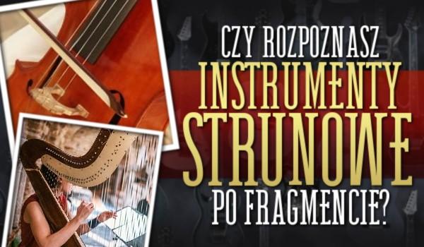 Wyzwanie dla muzyków! – Rozpoznasz instrumenty strunowe po fragmencie?