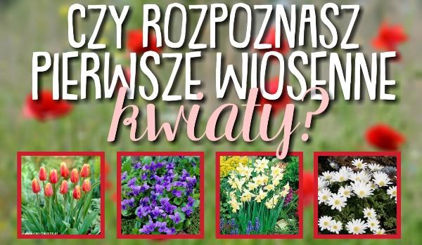 Czy rozpoznasz pierwsze, wiosenne kwiaty?