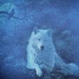 Blu_she_Wolf