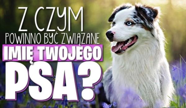 Zdrapka: Z czym powinno być związane imię Twojego psa?