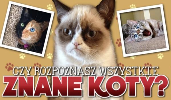 Czy uda Ci się rozpoznać wszystkie znane koty?
