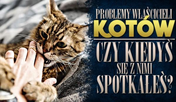 Problemy właścicieli kotów – czy kiedyś się z nimi spotkałeś?