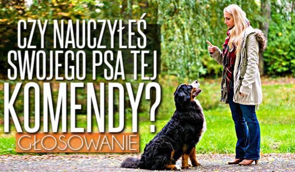 Czy nauczyłeś swojego psa tej komendy?