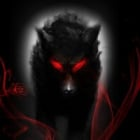 The_Black_Wolf