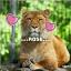Wild_Rose_Wolf