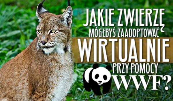 Jakie zwierzę mógłbyś zaadoptować wirtualnie przy pomocy WWF?