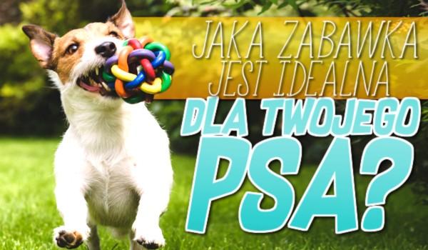 Jaka zabawka jest idealna dla Twojego psa?