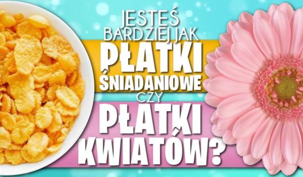 Jesteś bardziej jak płatki śniadaniowe czy jak płatki kwiatów?