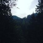 Paulinka_harc