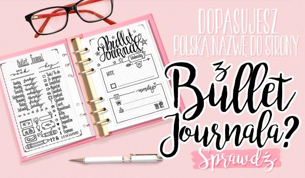 Czy dopasujesz polską nazwę do strony z bullet journala?