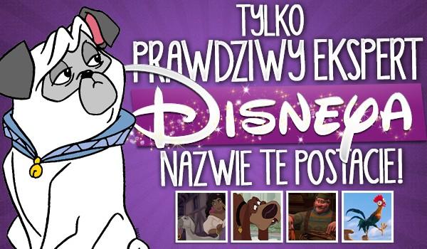 Tylko ekspert Disneya nazwie te postacie!