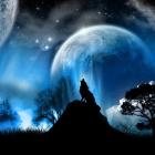 Snow_Wolf