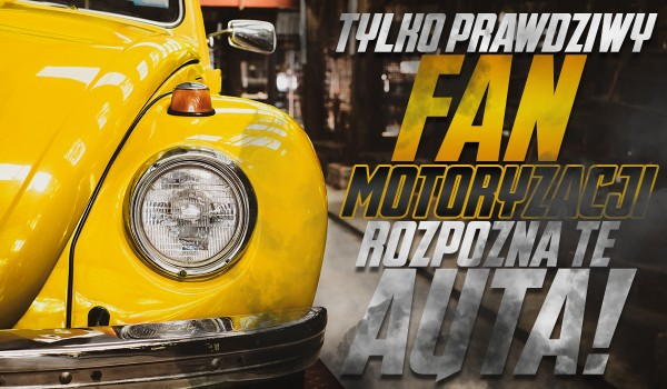 Tylko prawdziwy fan motoryzacji rozpozna te samochody!