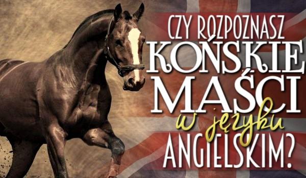 Rozpoznasz końskie maści w języku angielskim?