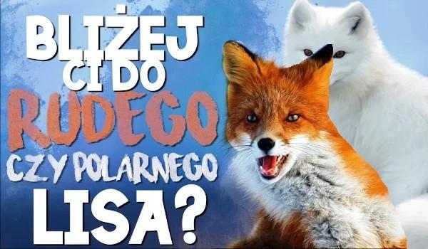 Bliżej Ci do lisa rudego czy polarnego?