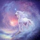 unicorn__quiz