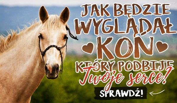 Jak będzie wyglądał koń, który podbije Twoje serce?