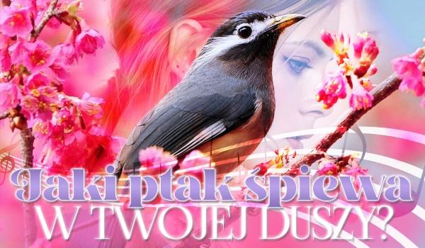Jaki ptak śpiewa w Twojej duszy?