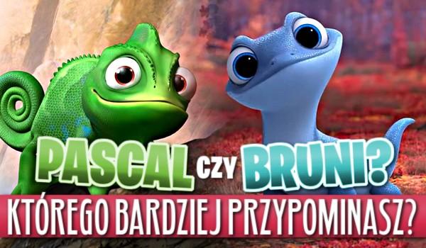 Pascal czy Bruni? Którego z nich bardziej przypominasz?