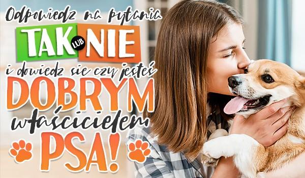 """Odpowiedz na pytania """"tak"""" lub """"nie"""" i dowiedz się, czy jesteś dobrym właścicielem psa!"""