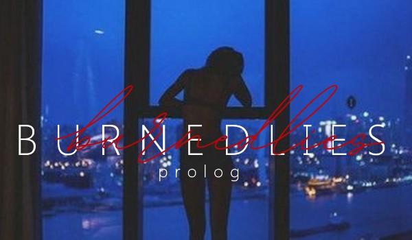 Burned lies •prolog•