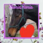 Monia_Konia