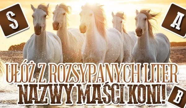 Ułóż z rozsypanych liter nazwy maści koni!