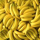 Bananik14