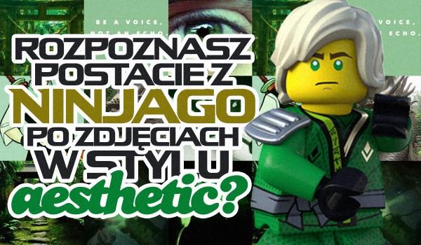 Czy dopasujesz postacie z serialu LEGO Ninjago do zdjęć w stylu aesthetic?