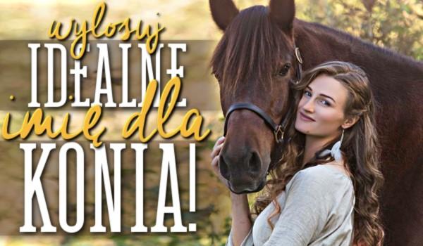 Wylosuj idealne imię dla Twojego konia!
