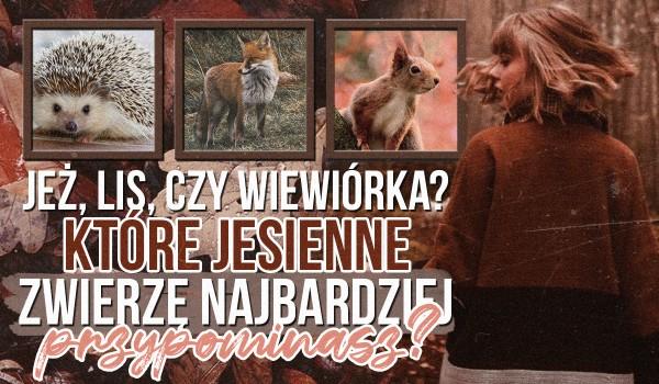 Jeż, lis czy wiewiórka – które jesienne zwierzę najbardziej przypominasz?