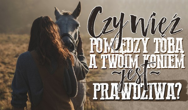 Czy więź pomiędzy Tobą a Twoim koniem jest prawdziwa?