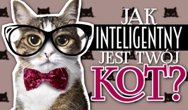 Jak inteligentny jest Twój kot?