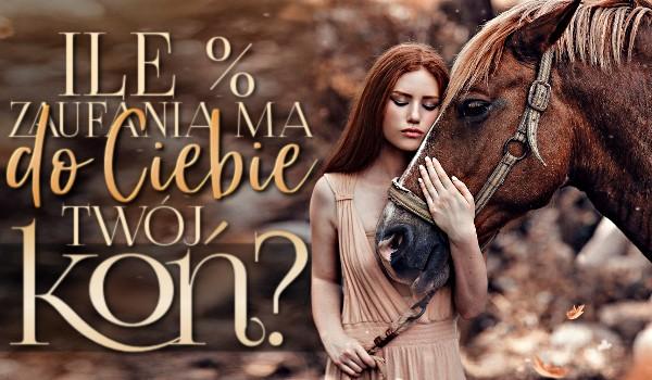 Ile % zaufania, ma do Ciebie Twój koń?