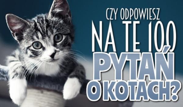 Czy odpowiesz na te 100 pytań o kotach?