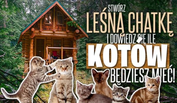 Stwórz leśną chatkę i przekonaj się, ile kotów będziesz mieć!