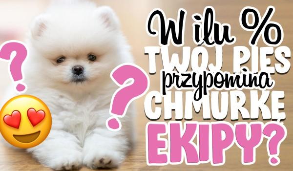 Jak bardzo Twój pies jest podobny do Chmurki z ekipy Friza?