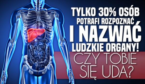 Tylko 30% osób potrafi rozpoznać i nazwać ludzkie organy! Czy Tobie się uda?