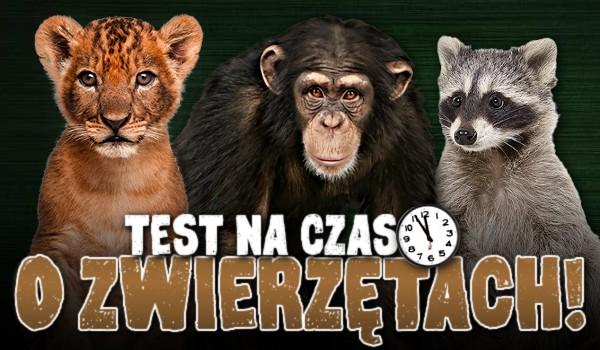 Test na czas o zwierzętach!
