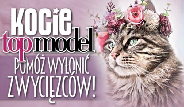 Kocie Top Model – Pomóż wyłonić zwycięzców!