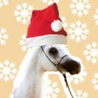 White.Horse