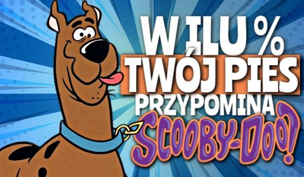 W ilu % Twój pies przypomina Scooby-Doo?