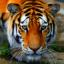 .Nieaktywny.Tygrysek.